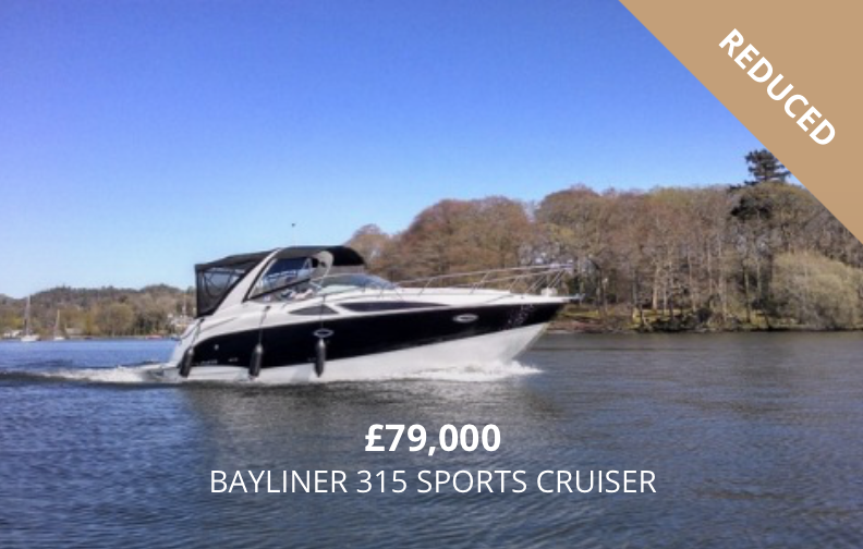 Bayliner 315 for Sale